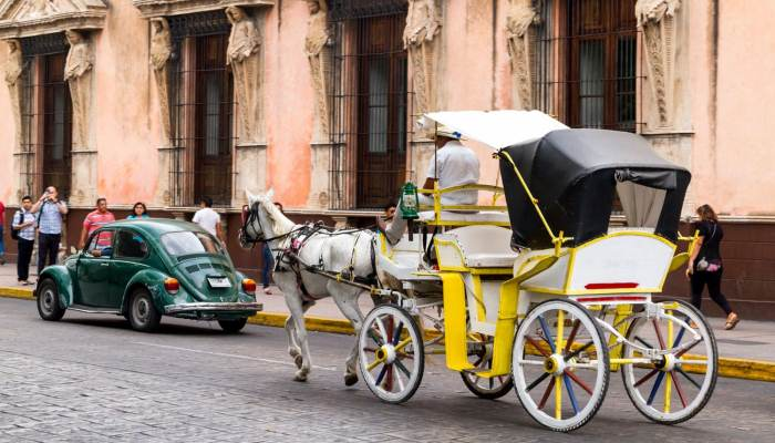 Mexico City Travel To The Most Family Friendly City In The World